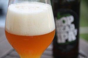 CRAFTWERK HOP HEAD IPA 003