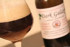 Dark Galaxy 004